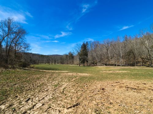 Hunting Property Kentucky : Stearns : McCreary County : Kentucky