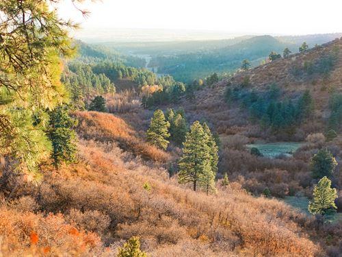 A+ Recreational & Hunting Ranch : Bayfield : La Plata County : Colorado