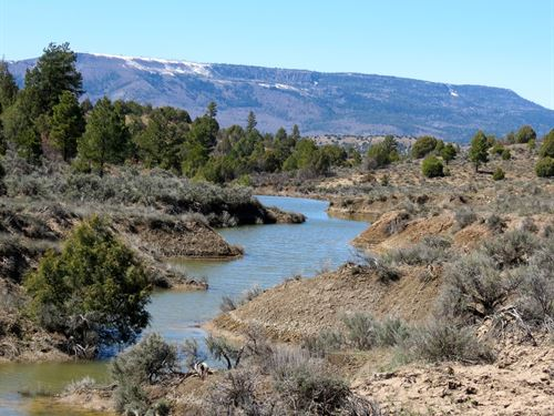 Monero Springs Ranch : Dulce : Rio Arriba County : New Mexico