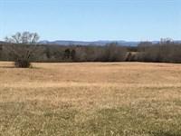 Farm Life At Its Finest : Gaffney : Cherokee County : South Carolina
