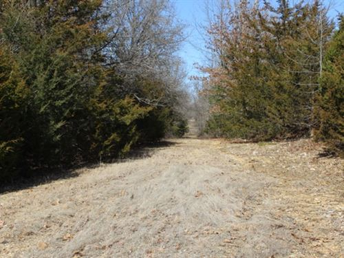 10 Wooded Acres, Highway Frontage : Mansfield : Wright County : Missouri