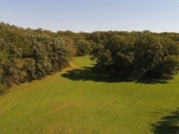 Amazing Quiet, Private Setting : Brooklyn : Green County : Wisconsin