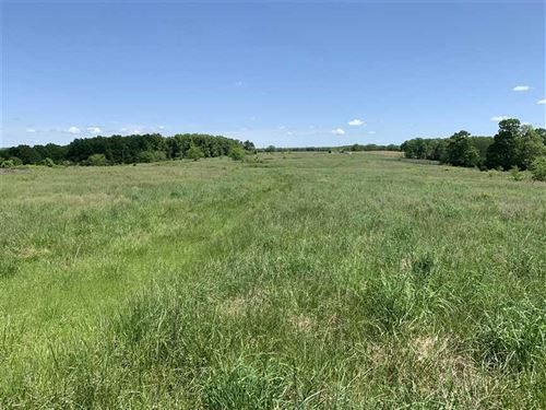 800 Acres Located in Ozark County : Gainesville : Ozark County : Missouri