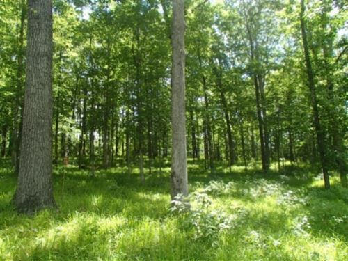3.75 Acres In Lowndes County In Col : Columbus : Lowndes County : Mississippi