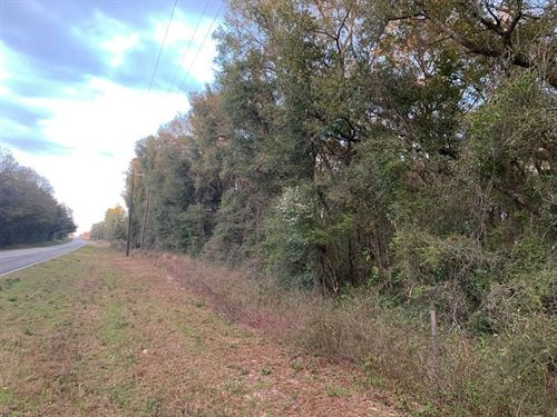 5 Acres Hickory Bluff Subdivision : Trenton : Gilchrist County : Florida