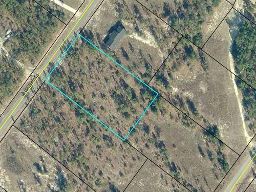 Estate Sized Land Lot Ridgeland, SC : Ridgeland : Jasper County : South Carolina