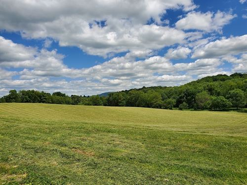 Country Acreage Lake Views : Abingdon : Washington County : Virginia