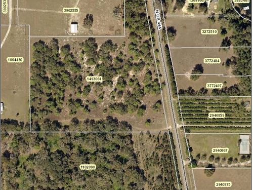 11.5 Level Acres On Cr 44A : Eustis : Lake County : Florida