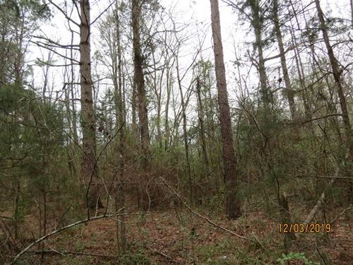 Wooded Residential Building Lot On : Idabel : McCurtain County : Oklahoma