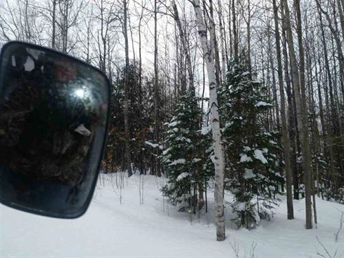 40 Acres On The Skanee, Mls 1113046 : L'anse : Baraga County : Michigan