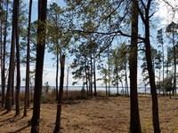 Coastal Nc Waterfront Acreage : New Bern : Pamlico County : North Carolina