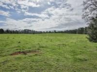 Cattle Farm, Farm House : Monticello : Jasper County : Georgia