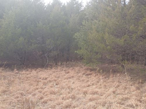 Vacant Wooded Land North Arkansas : Ash Flat : Izard County : Arkansas