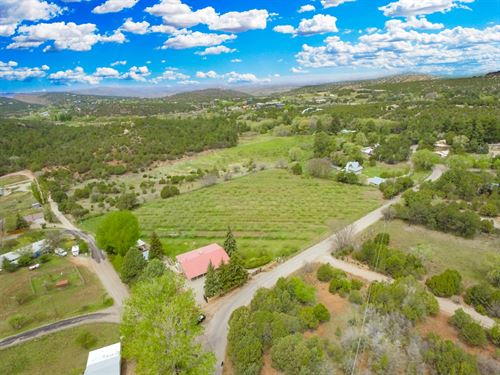 Producing Apple Orchard Southern NM : High Rolls : Otero County : New Mexico