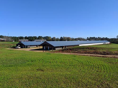 White Oak Farms : Florala : Covington County : Alabama