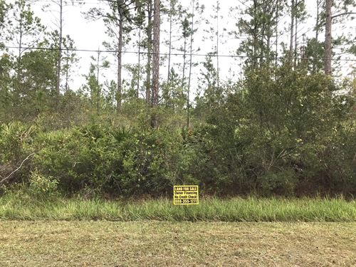 Mobile Home Lot Owner Financing : Bunnell : Flagler County : Florida