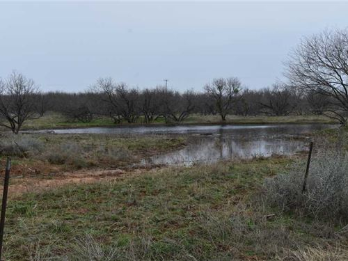 Tract 2, 11.02 Acres With a Pon : Archer City : Archer County : Texas