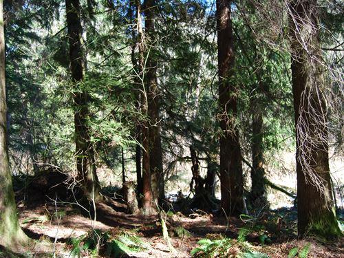 Section 14 : Monroe : Snohomish County : Washington
