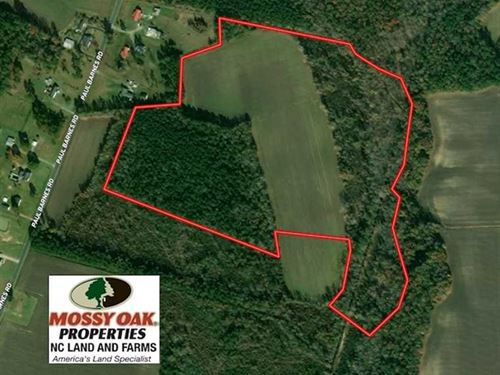 47 Acres of Farm And Timber Land : Chadbourn : Columbus County : North Carolina