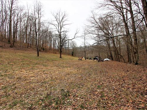 Land Building & Creek Santa Fe : Santa Fe : Maury County : Tennessee