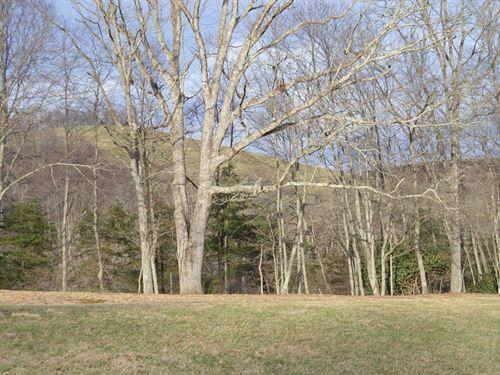 Nice Building Lots Alleghany Manor : Sparta : Alleghany County : North Carolina