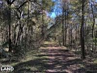 Myers Hill Road Estate : Brunswick : Glynn County : Georgia