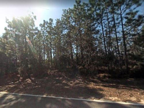 Putnam County, Fl -$7,000 : Interlachen : Putnam County : Florida