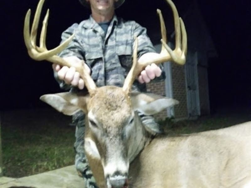 160 Acres Of Tremendous Hunting : Land for Sale : Preston : Webster County  : Georgia