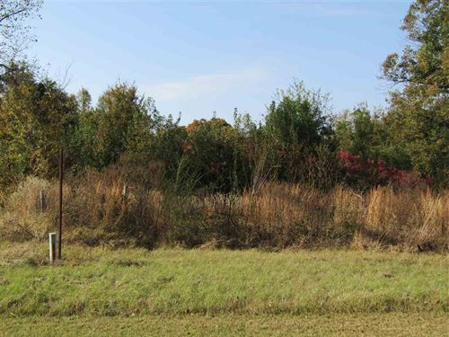 Acreage With Trees And Pond : Paris : Lamar County : Texas