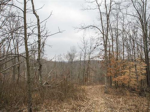 Tabor Ridge Rd, 45 Acres, Washin : Stockport : Washington County : Ohio
