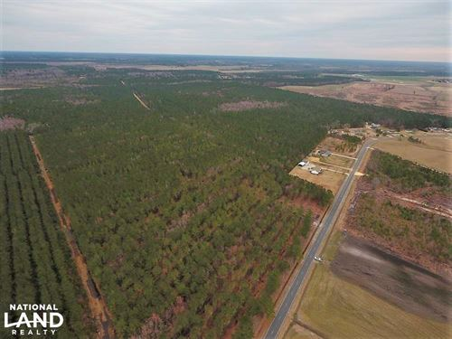 Lenoir County Timber/Hunting Tract : Kinston : Lenoir County : North Carolina
