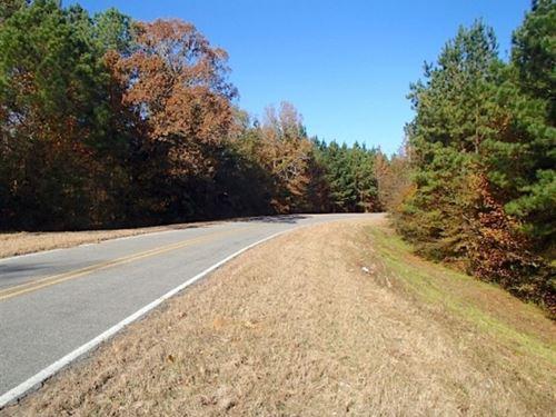 17 Acres In Neshoba County In Phila : Philadelphia : Neshoba County : Mississippi