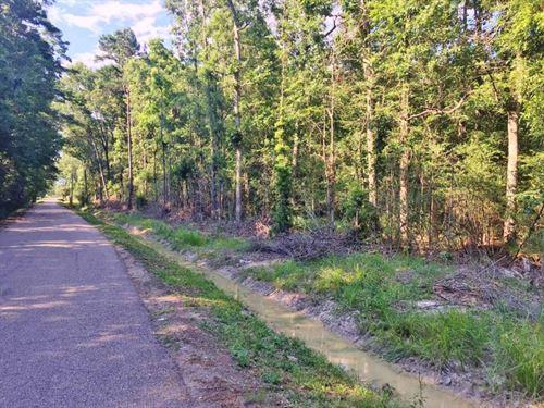 23 Acres For Sale Springfield, Livi : Springfield : Livingston Parish : Louisiana