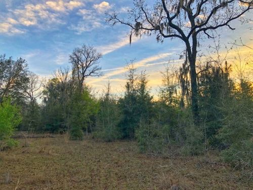 Spring Ridge Subdivision, Lot, High : High Springs : Gilchrist County : Florida