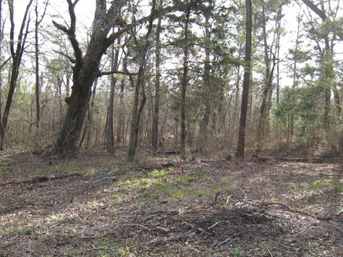 East TX Land, Acreage Frankston TX : Frankston : Anderson County : Texas