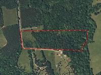 Creek View Pristine Country Kerr : South Boston : Halifax County : Virginia