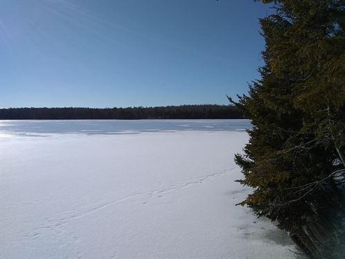 Coastal Lakefront Property : Marion : Washington County : Maine