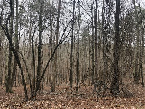 5.61 Wooded Acres Bartow County : Adairsville : Bartow County : Georgia
