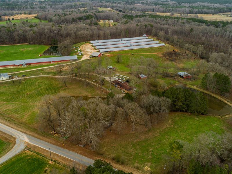 5 House Broiler Poultry Farm, Home : Franklin : Heard County : Georgia