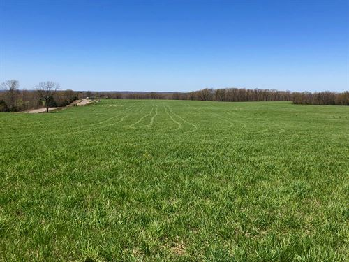 Land For Sale In Southern Mo Ozarks : Mountain Grove : Texas County : Missouri