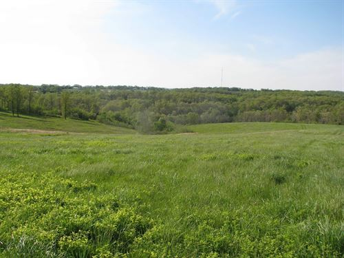 Farm Land For Sale In The Ozarks : Ava : Douglas County : Missouri