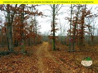 Clearing, Mountain Views, Hunting : Jadwin : Dent County : Missouri