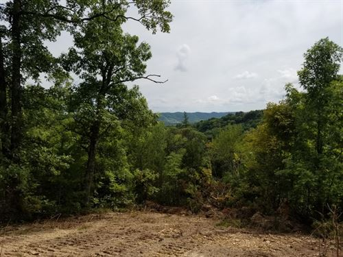 32.51Ac W/Awesome Mtn & Valley View : Celina : Clay County : Tennessee