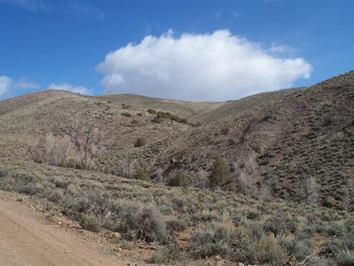 Prosper Lane : Gunnison : Colorado