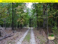 Wild Property Near Bull Shoals Lake : Mountain Home : Marion County : Arkansas