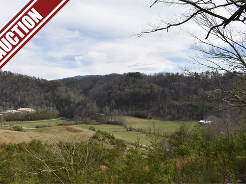 Auction, Lot 18 On Jones Cove Rd : Cosby : Sevier County : Tennessee