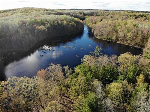 70 Acres Clare County : Farwell : Clare County : Michigan