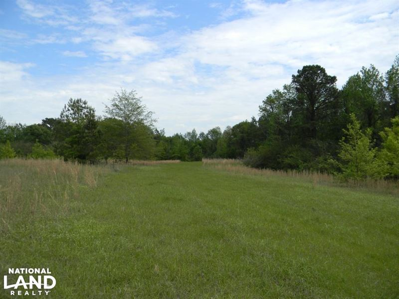 Hartley Road Deer, Turkey & Lodge : Marion : Perry County : Alabama