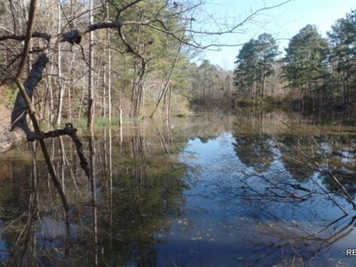 162 Ac, Recreational Tract With Po : Burkeville : Newton County : Texas