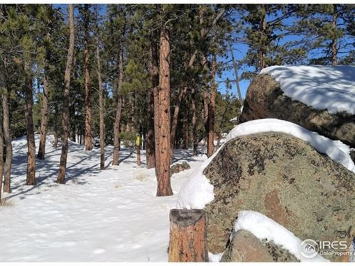 Beautiful Lot Fox Acres Community : Red Feather Lakes : Larimer County : Colorado